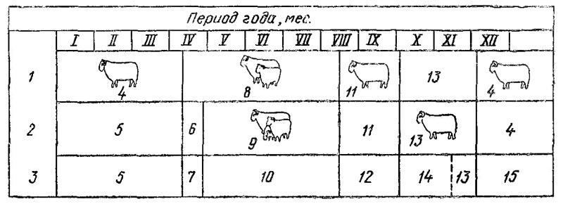 Схема  пастбищ в разное время года.