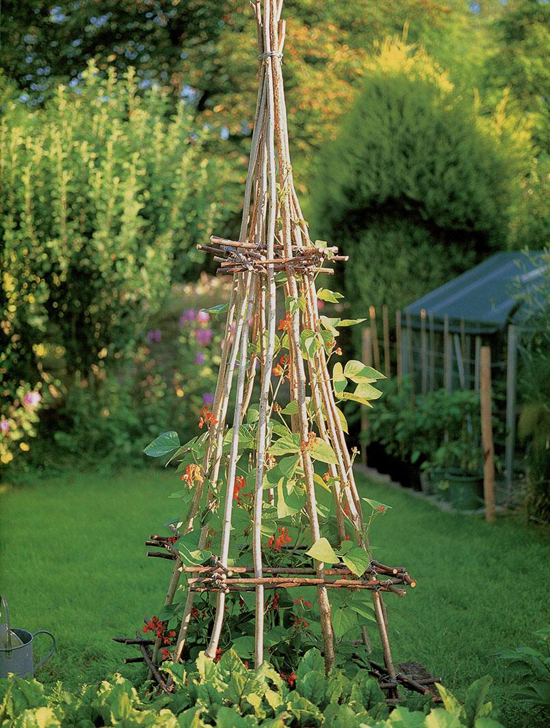 Как сделать вигвам для садовых растений