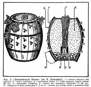 zemlyanichnaya-bochka